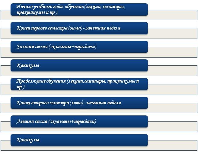 Структура учебного года для студента
