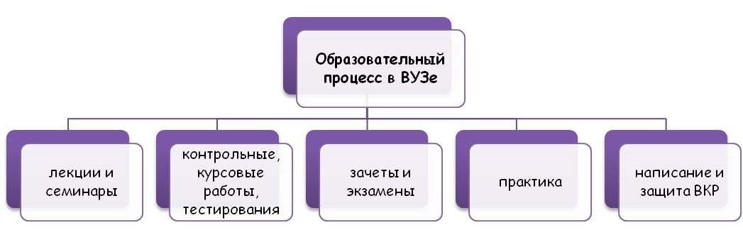 Образовательные процесс