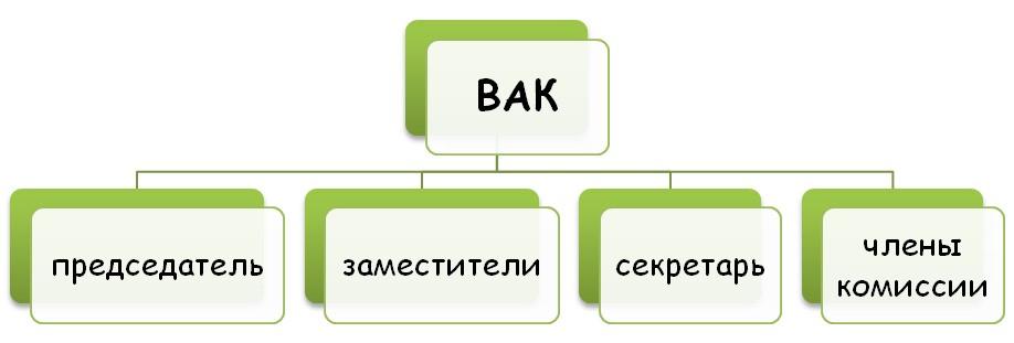 Внутренняя структура ВАК