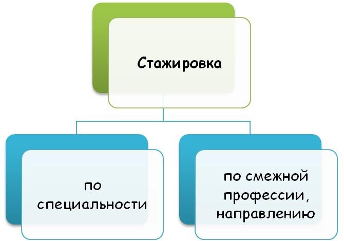 По виду деятельности