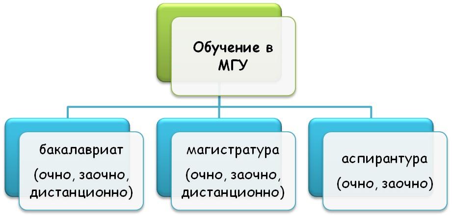 Образование в МГУ