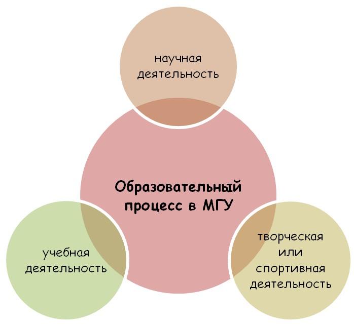 Отличительные характеристики обучения в МГУ