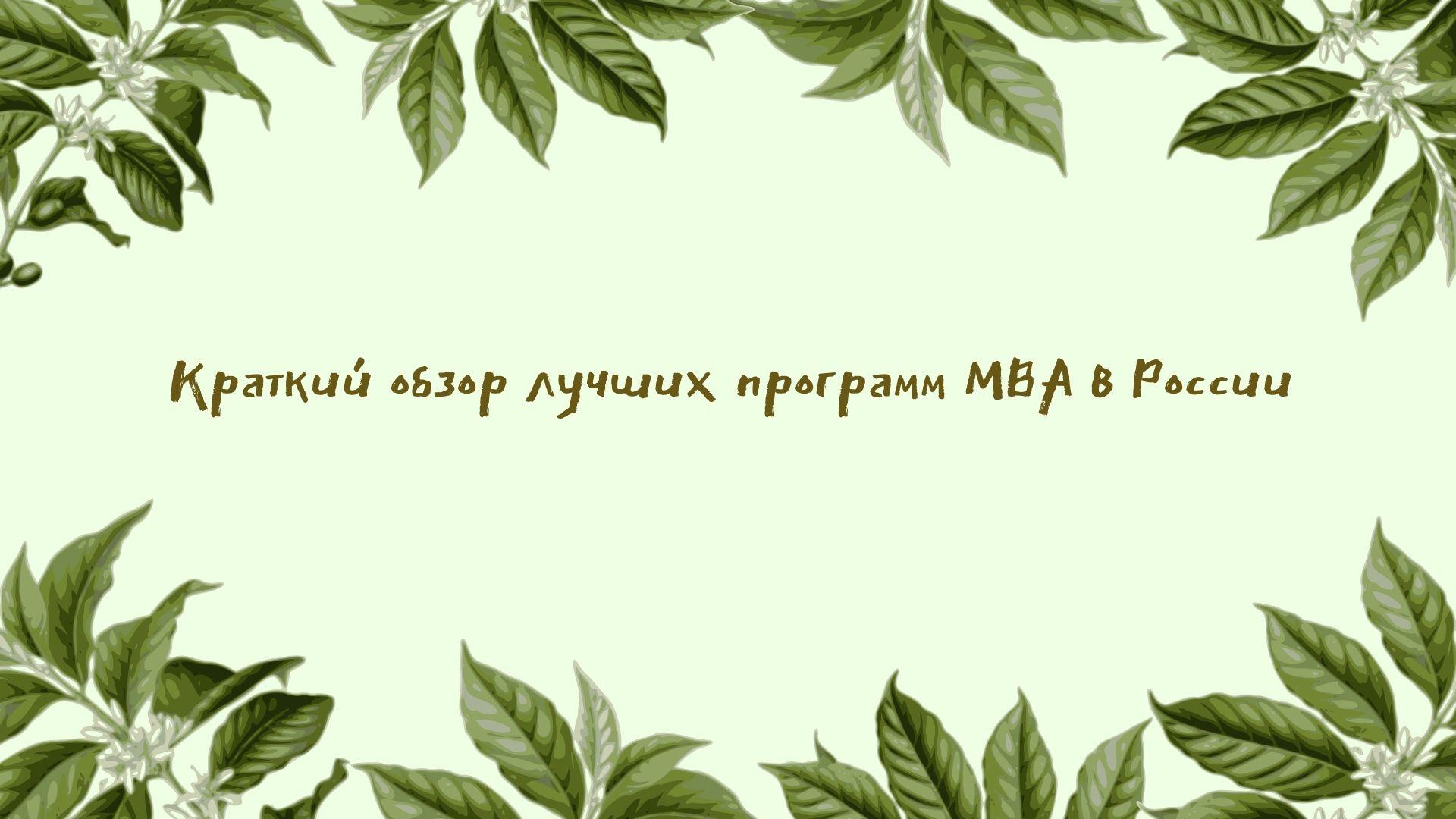 Краткий обзор лучших программ МВА в России