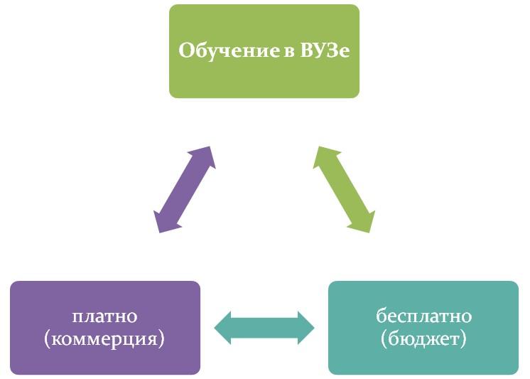 Бюджет и контракт при обучении
