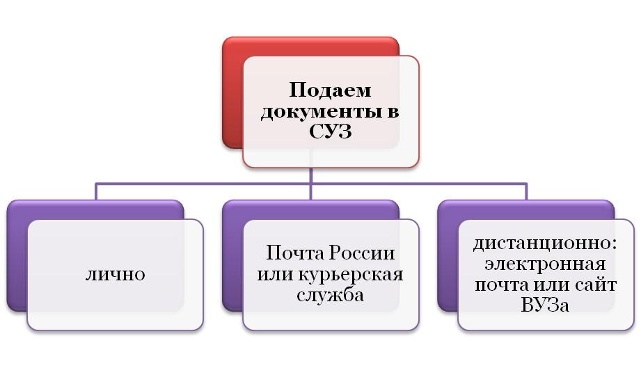 Варианты подачи документов в СУЗ