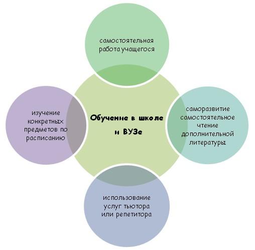 Специфика обучения школьника или студента