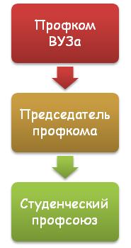 Структура студенческого профсоюза