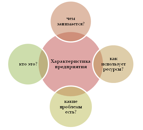 Характеристика предприятия