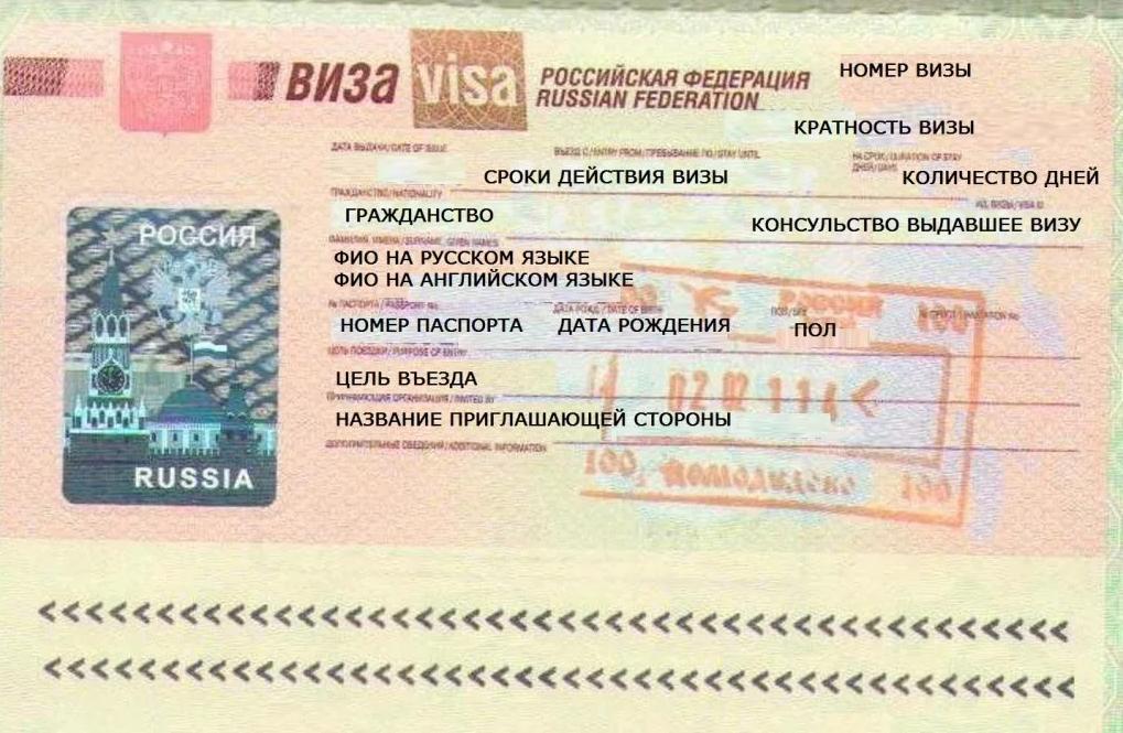 Как выглядит виза?