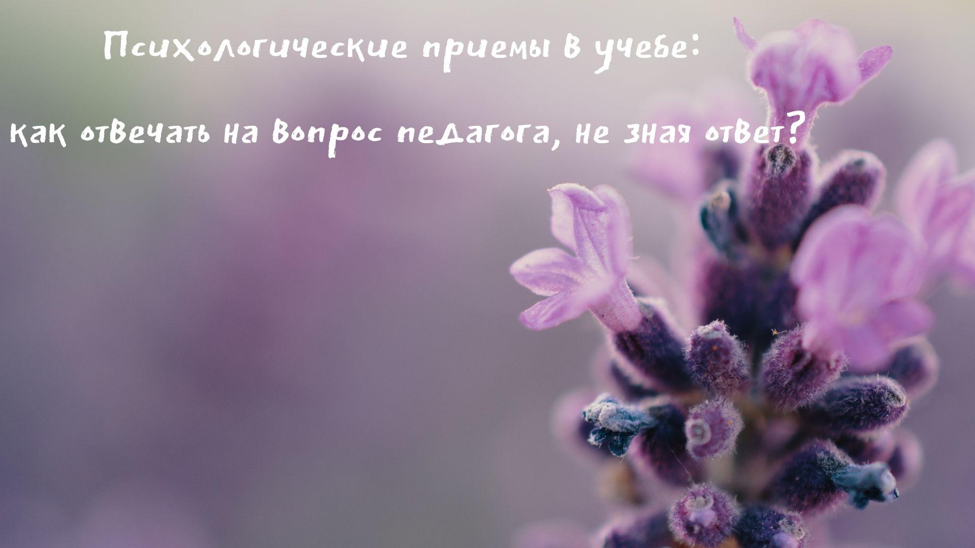 Kak izbavitsya ot yazykovogo barera 1 - Не будет занятий как ответить
