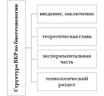 Структура ВКР по биотехнологии