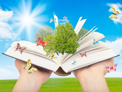 Заключение к диссертации Все особенности написания заключения  Заключение диссертации