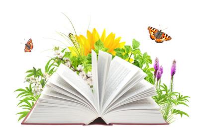 советов по написанию дипломной работы дипломного проекта